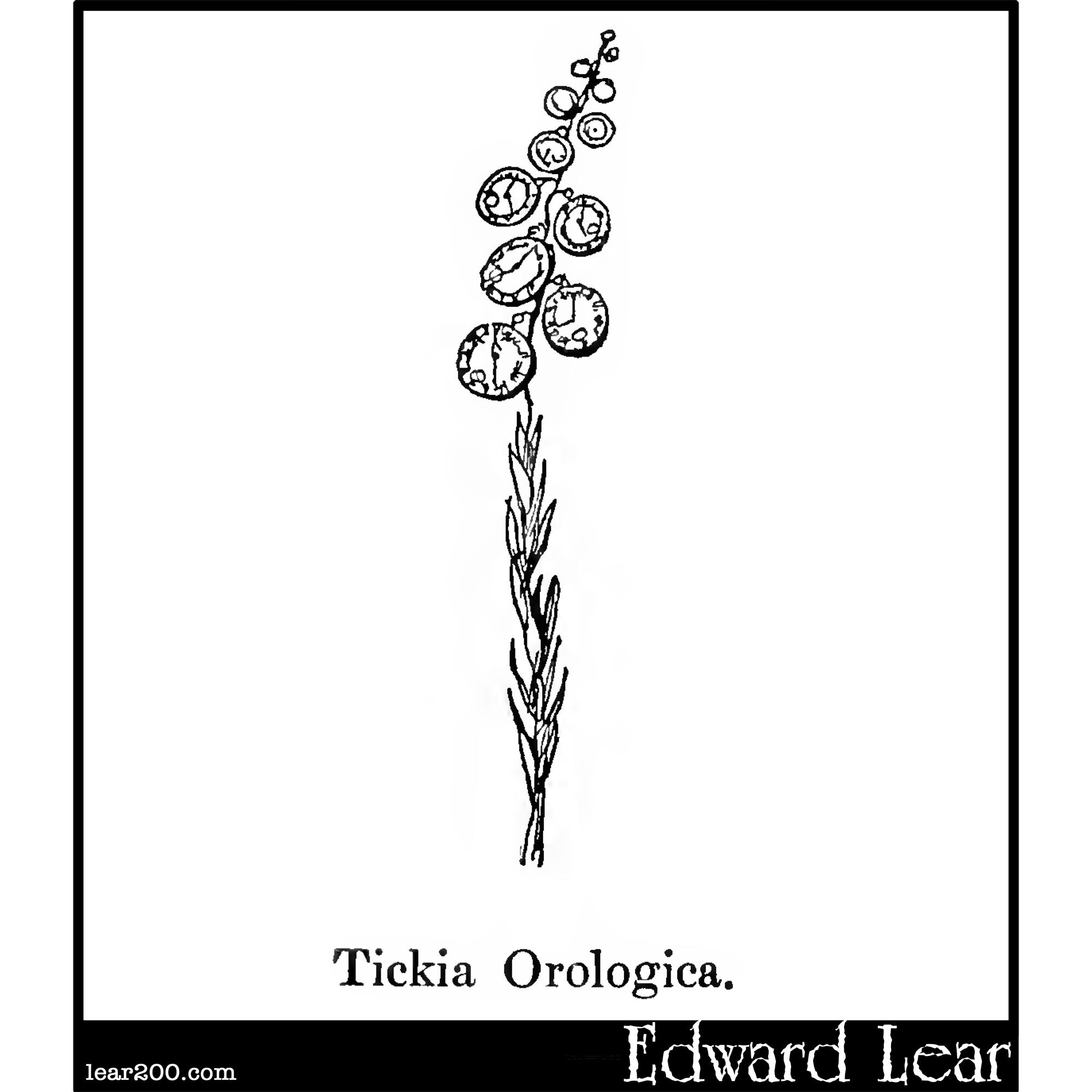 Tickia Orologica