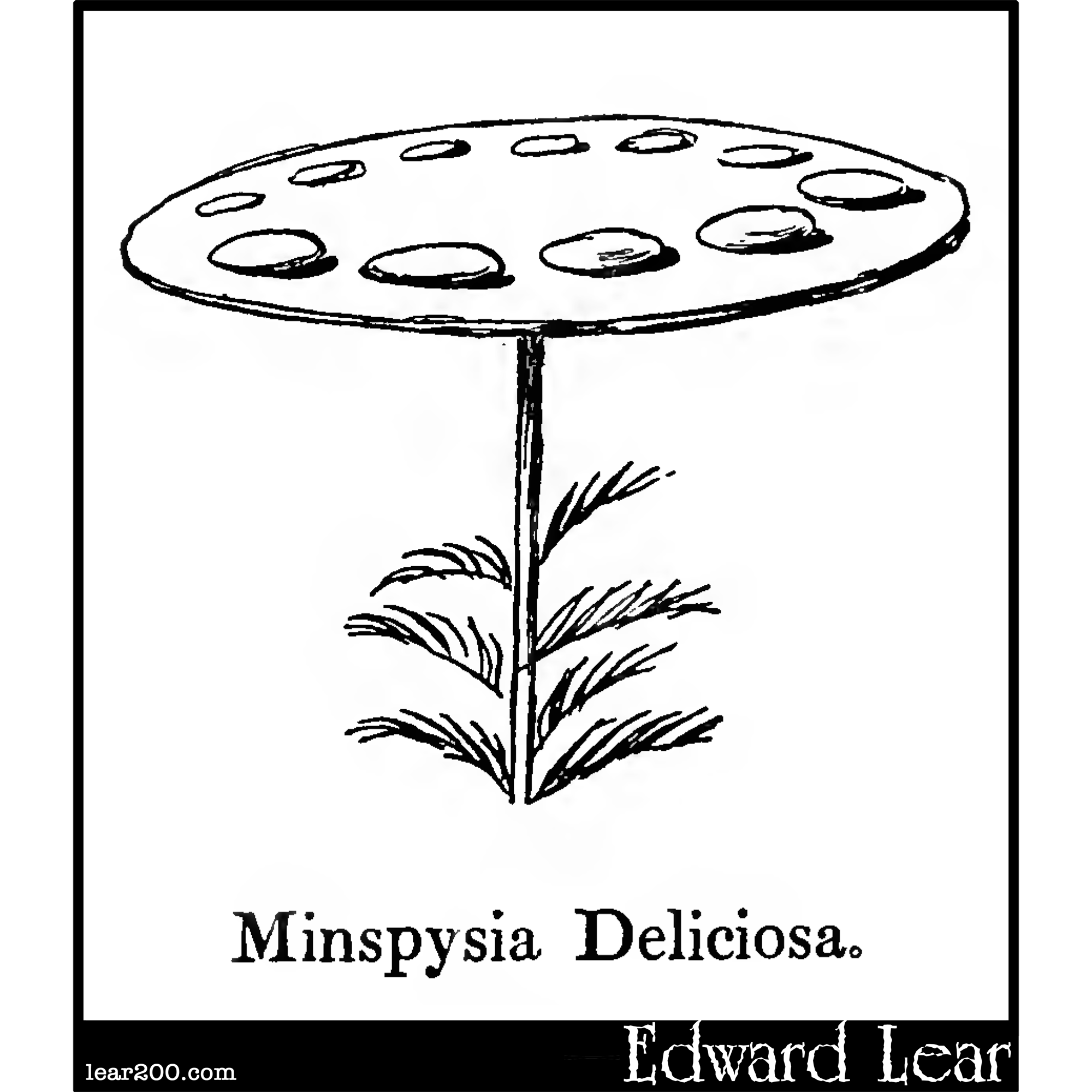 Minspysia Deliciosa