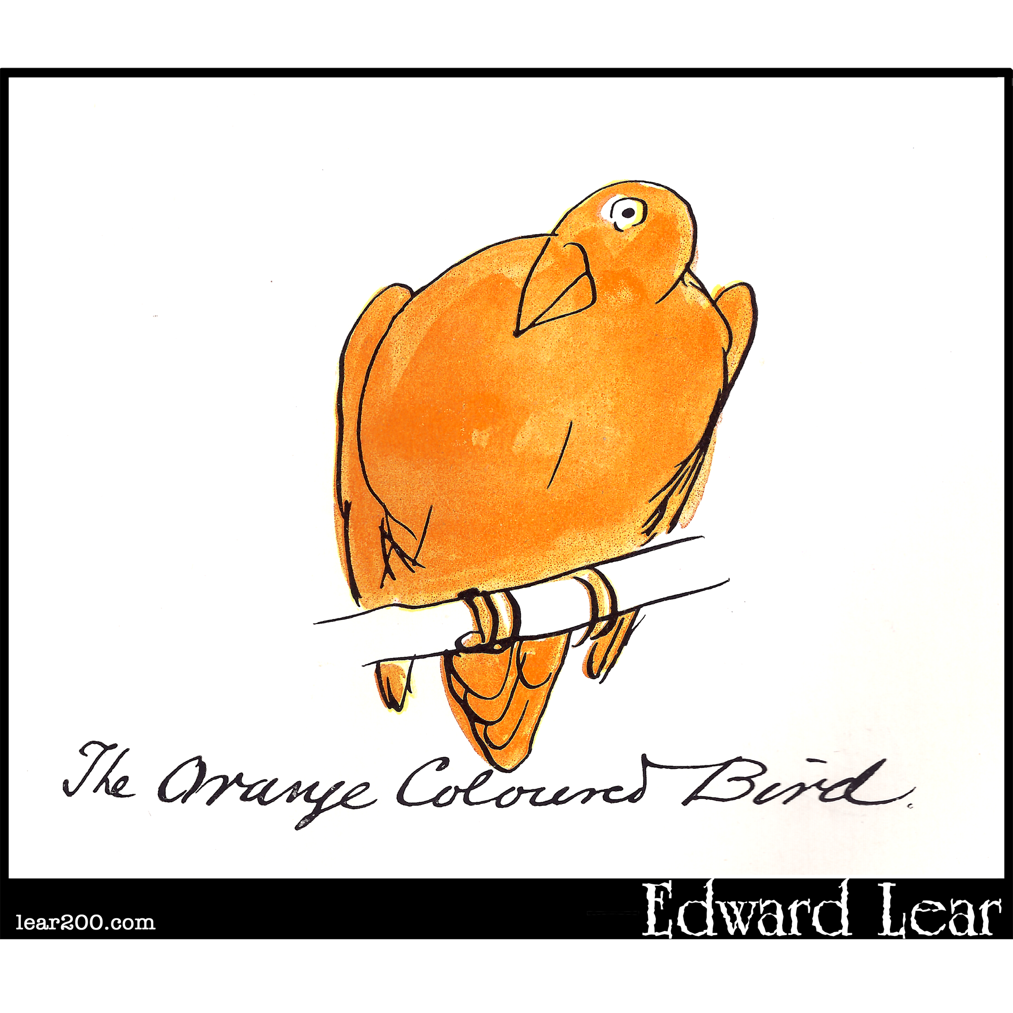 The Orange Coloured Bird