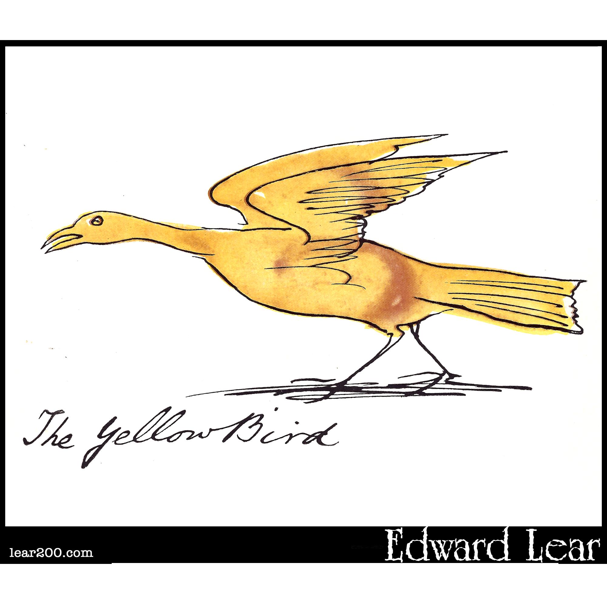 The Yellow Bird