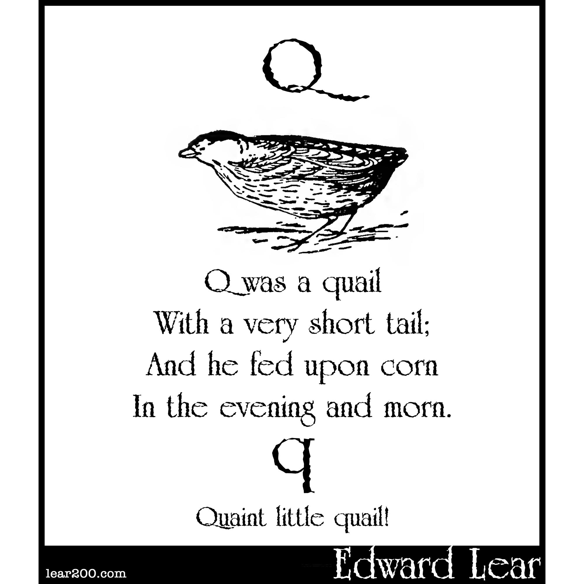 Q was a quail