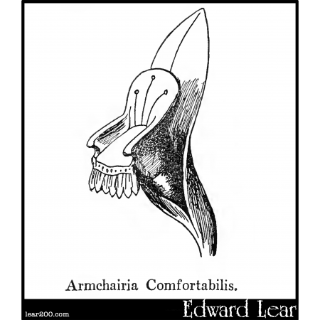 Armchairia Comfortabilis.