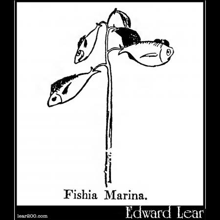 Fishia Marina.
