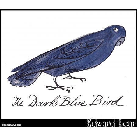 The Dark Blue Bird