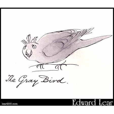 The Gray Bird