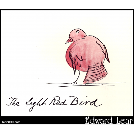 Light Red Bird