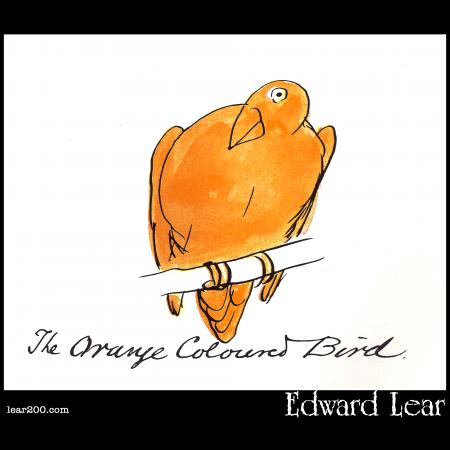 The Orange Coloured Bird