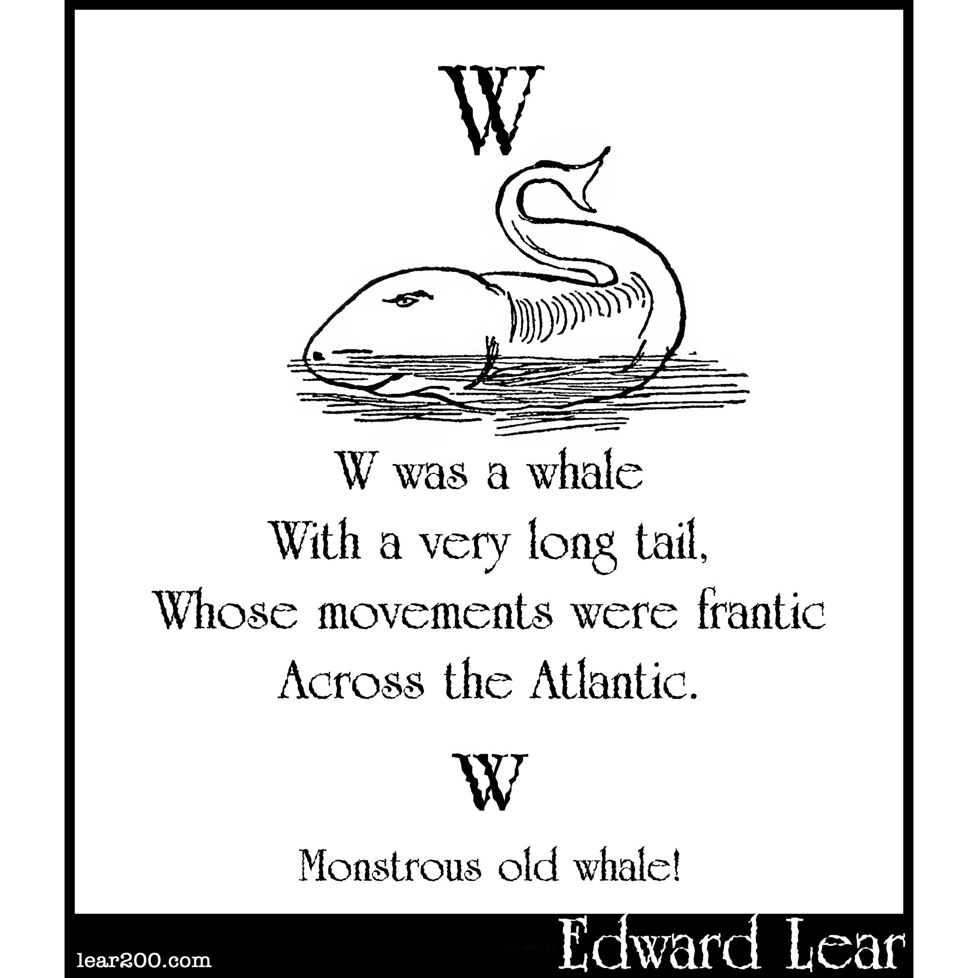 W was a whale